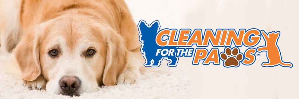 Cleaning for the Paws graphic