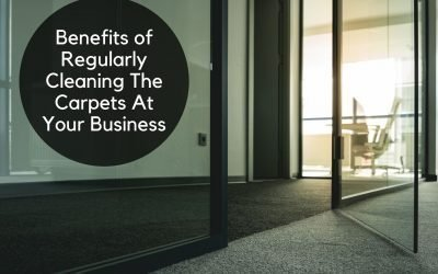 Benefits of Regularly Cleaning The Carpets At Your Business