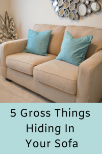 5 Gross Things Hiding In Your Sofa