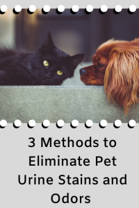 3 Methods to Eliminate Pet Urine and Stains