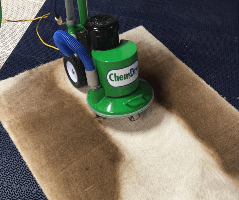 Chem-Dry equipment performing carpet cleaning in Blaine mn
