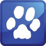 pet stain removal icon
