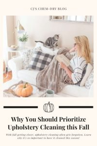 Why You Should Prioritize Upholstery Cleaning this Fall