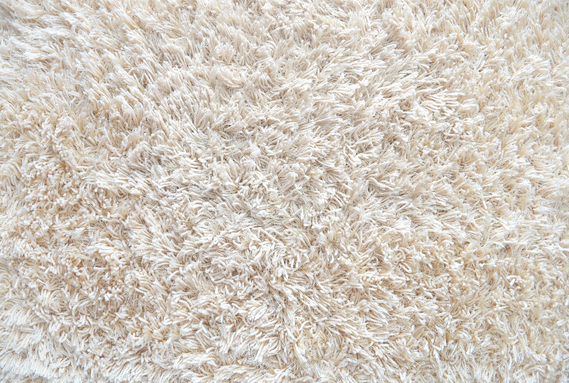 carpet after carpet cleaning andover mn